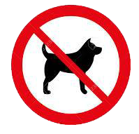 No dogs are allowed on the Grounds at the Rugby Club, this includes the Lime Track.